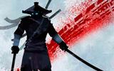 Çılgın Ninja Arashi