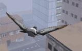 3D Kuş Gibi Uç 3