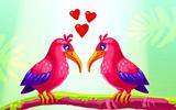 Aşık Kuşlar