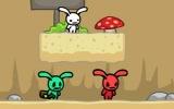 Asit Tavşan 2