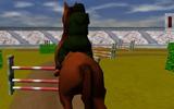 At Eğitme