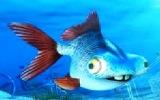 Balık Corç