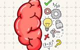 Beyin Testi 2
