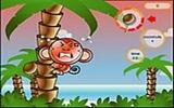 Cocoon Adası