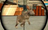 Gerçek Tavşan Avı