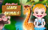 Hazel Bebek Hayvanları Öğreniyor 2