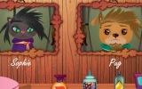 Kedi Köpek Kuaförü