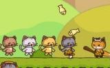 Kedi Takımı