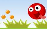 Kırmızı Top Macera
