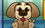 Köpek Bakma