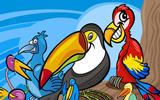 Kuş Boyama