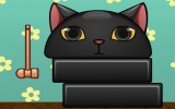 Topuk Kırmaca Kedi